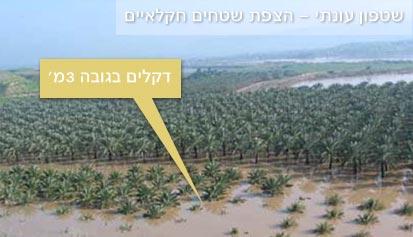 שטפון עונתי הצפת שטחים חקלאיים