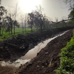פרויקט ניסיוני שימורי קרקע בנאעורה