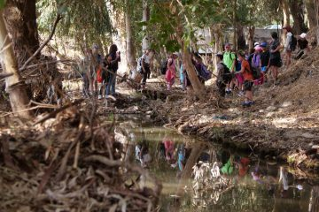 תלמידי בתי הספר מרומי שדה ונין מאמצים את נחל תבור