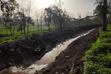 """לראשונה בצפון הארץ: פרויקט ניסיוני לשימור יערות קק""""ל והחקלאות"""